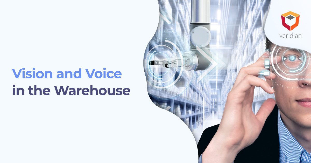Vision and Voice in the Warehouse